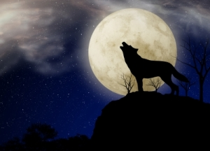 inktuition wolf and moon